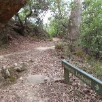 Track to Copelands lookout (93430)