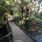 Crossing the Leura Cascades creek (93781)