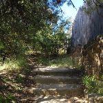 Steps on Elysian Rock track (95401)