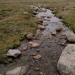 Merritts Creek (96493)