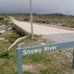 Snowy River Bridge (96526)