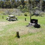 Sawpit Creek Picnic Area (97672)