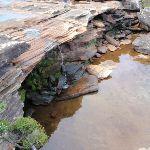 Creek at Curracarrang Cove (99728)