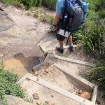 Track down steps to Garie Beach (99860)